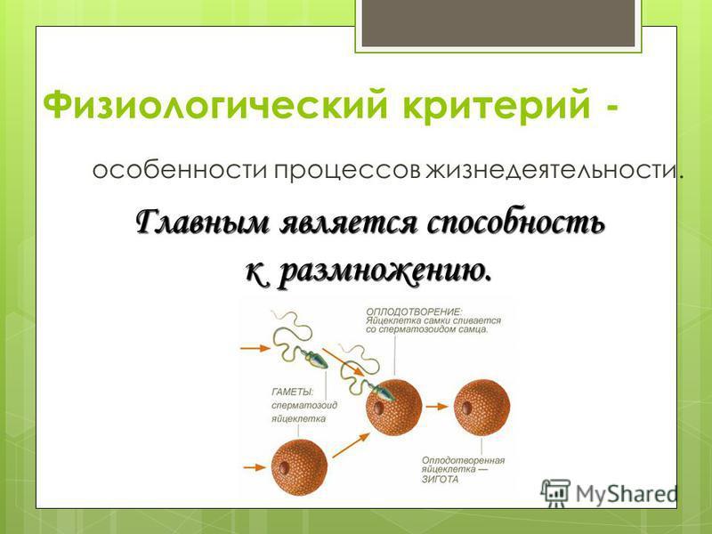 Физиологический критерий - особенности процессов жизнедеятельности. Главным является способность к размножению.
