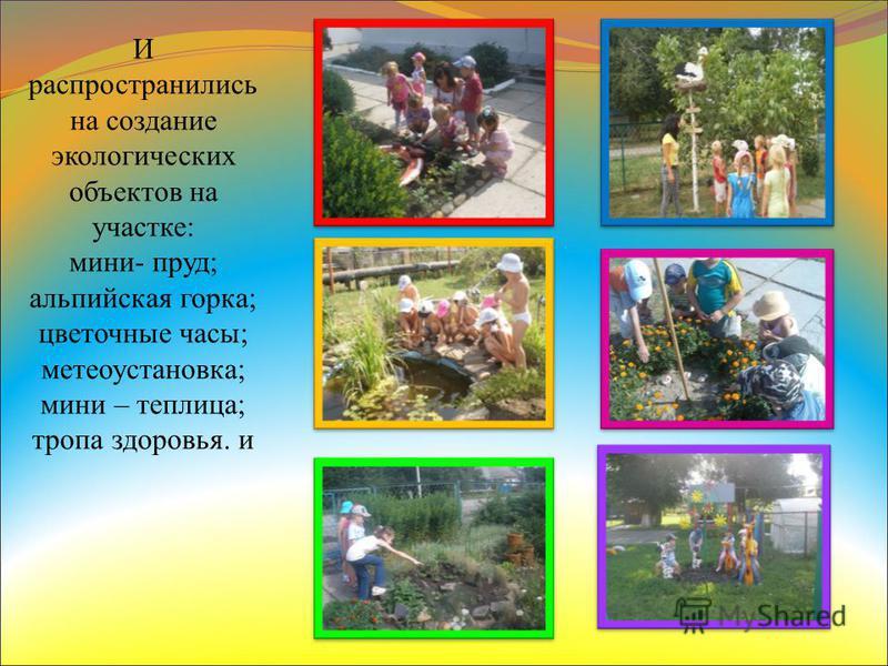 И распространились на создание экологических объектов на участке: мини- пруд; альпийская горка; цветочные часы; метеоустановка; мини – теплица; тропа здоровья. и