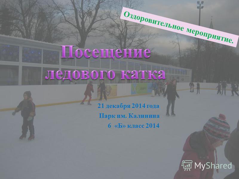 21 декабря 2014 года Парк им. Калинина 6 «Б» класс 2014 Оздоровительное мероприятие.