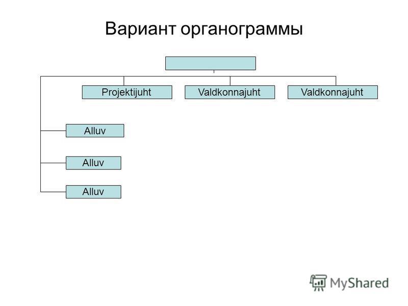 Вариант органограммы ProjektijuhtValdkonnajuht Alluv