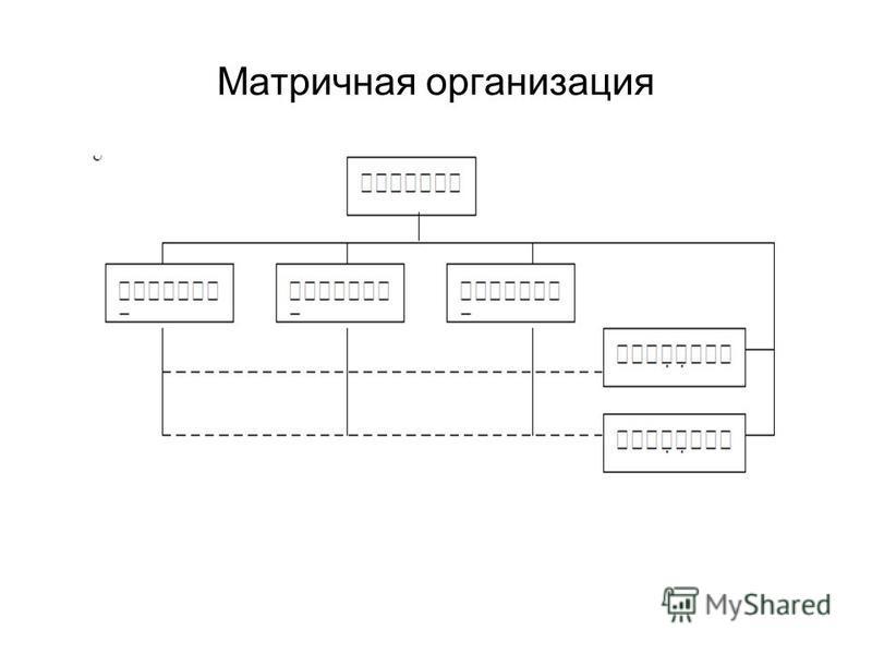 Матричная организация