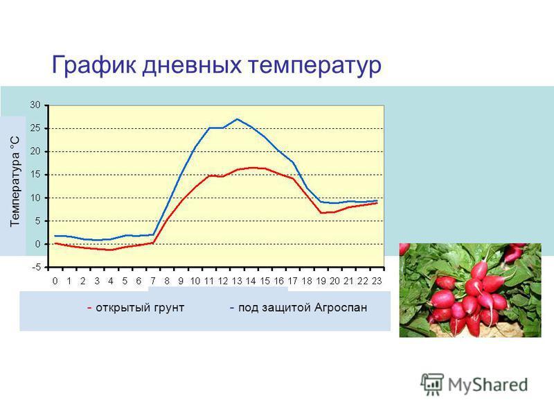 Температура °C Время суток, ч. - открытый грунт - под защитой Агроспан График дневных температур