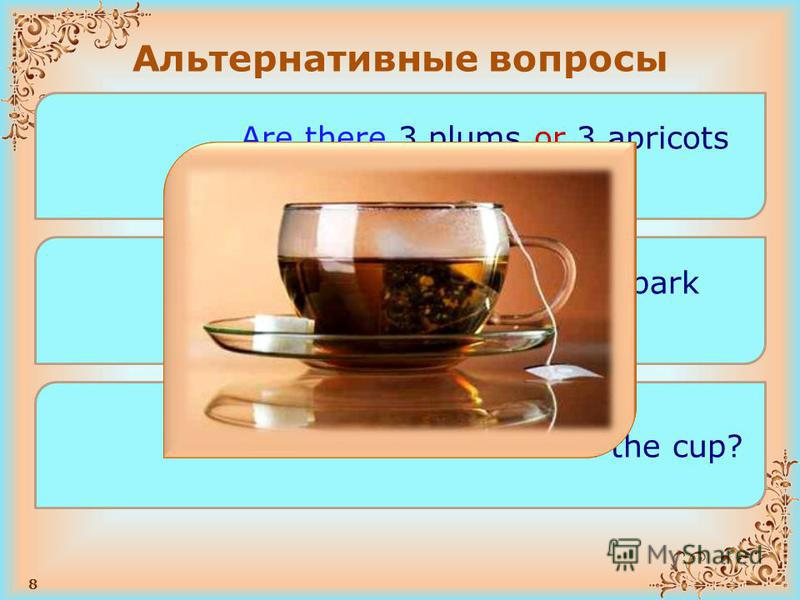 8 Альтернативные вопросы Are there 3 plums or 3 apricots on the table? Are there children in the park or in the forest? Is there tea or water in the cup?