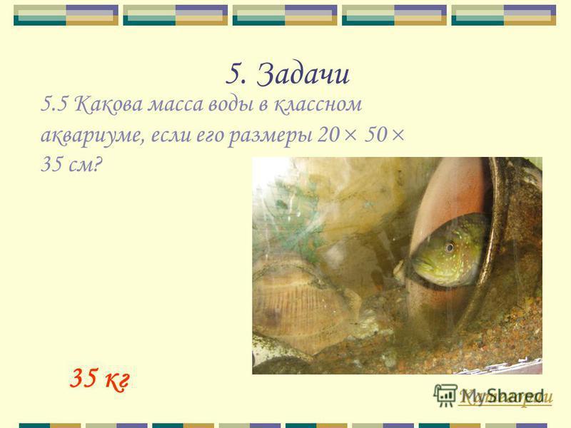 5. Задачи Категории 35 кг 5.5 Какова масса воды в классном аквариуме, если его размеры 20 50 35 см?