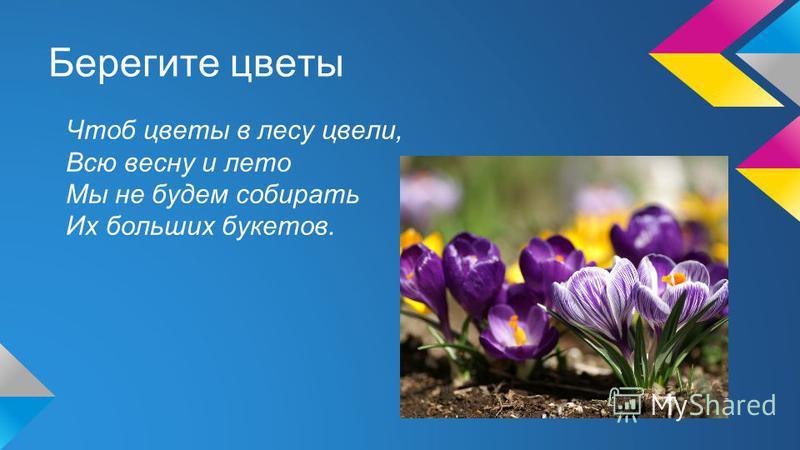 Берегите цветы Чтоб цветы в лесу цвели, Всю весну и лето Мы не будем собирать Их больших букетов.