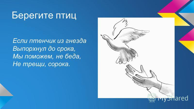 Берегите птиц Если птенчик из гнезда Выпорхнул до срока, Мы поможем, не беда, Не трещи, сорока.
