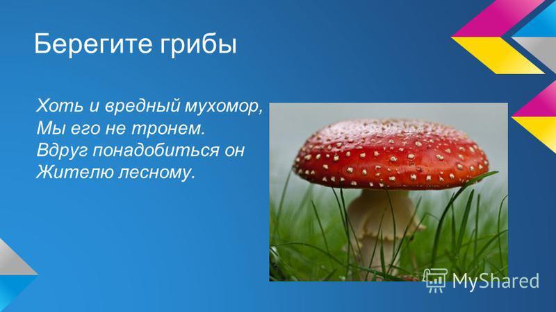 Берегите грибы Хоть и вредный мухомор, Мы его не тронем. Вдруг понадобиться он Жителю лесному.