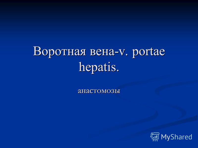 Воротная вена-v. portae hepatis. анастомозы