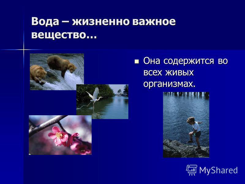 Вода – жизненно важное вещество… Она содержится во всех живых организмах. Она содержится во всех живых организмах.