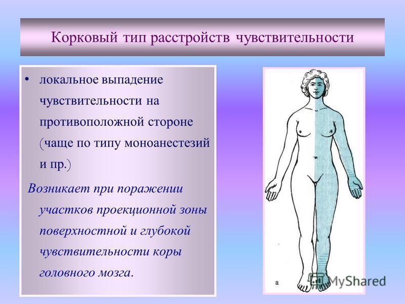 Корковый тип расстройств чувствительности локальное выпадение чувствительности на противоположной стороне ( чаще по типу моноанестезий и пр.) Возникает при поражении участков проекционной зоны поверхностной и глубокой чувствительности коры головного