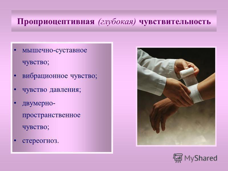 Проприоцептивная (глубокая) чувствительность мышечно-суставное чувство; вибрационное чувство; чувство давления; двумерно- пространственное чувство; стереогноз.