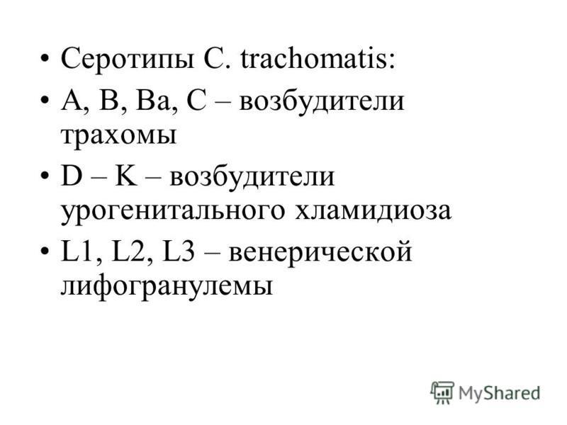 Серотипы C. trachomatis: А, В, Ва, С – возбудители трахомы D – K – возбудители урогенитального хламидиоза L1, L2, L3 – венерической лимфогранулемы