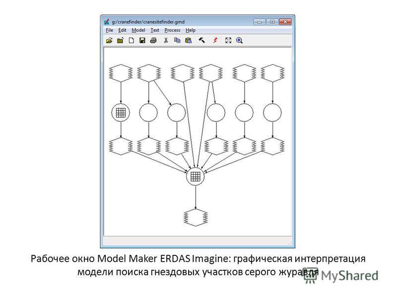 Рабочее окно Model Maker ERDAS Imagine: графическая интерпретация модели поиска гнездовых участков серого журавля