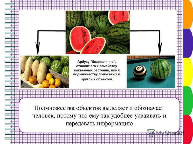 Подмножества объектов выделяет и обозначает человек, потому что ему так удобнее усваивать и передавать информацию
