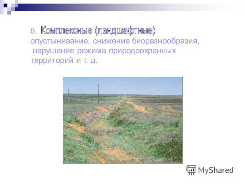 6. опустынивание, снижение биоразнообразия, нарушение режима природоохранных территорий и т. д.