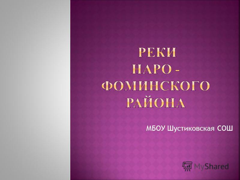МБОУ Шустиковская СОШ