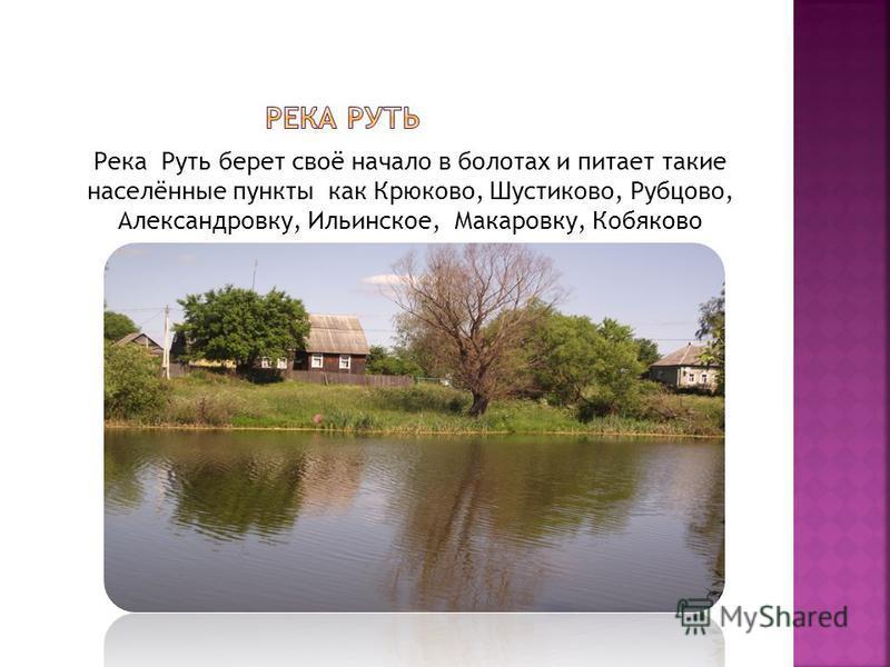 Река Руть берет своё начало в болотах и питает такие населённые пункты как Крюково, Шустиково, Рубцово, Александровку, Ильинское, Макаровку, Кобяково