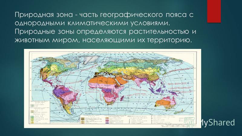 Природная зона - часть географического пояса с однородными климатическими условиями. Природные зоны определяются растительностью и животным миром, населяющими их территорию.