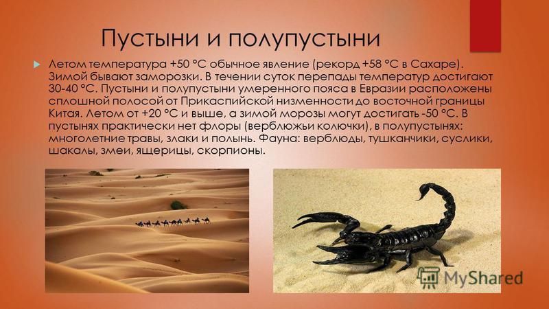 Пустыни и полупустыни Летом температура +50 °C обычное явление (рекорд +58 °C в Сахаре). Зимой бывают заморозки. В течении суток перепады температур достигают 30-40 °C. Пустыни и полупустыни умеренного пояса в Евразии расположены сплошной полосой от