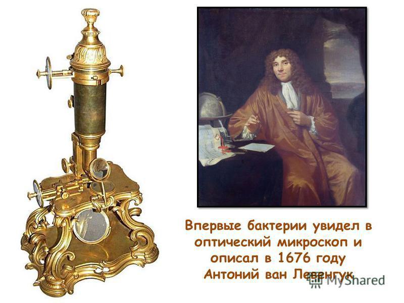 Впервые бактерии увидел в оптический микроскоп и описал в 1676 году Антоний ван Левенгук
