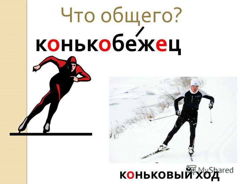 конькобежец Что общего ? коньковый ход