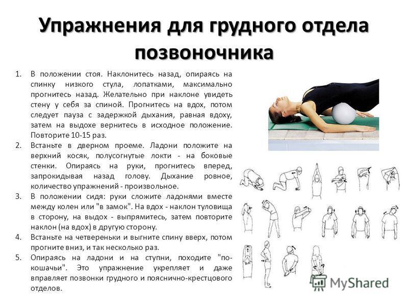 Упражнения для грудного отдела позвоночника 1. В положении стоя. Наклонитесь назад, опираясь на спинку низкого стула, лопатками, максимально прогнитесь назад. Желательно при наклоне увидеть стену у себя за спиной. Прогнитесь на вдох, потом следует па