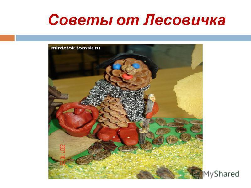 Советы от Лесовичка