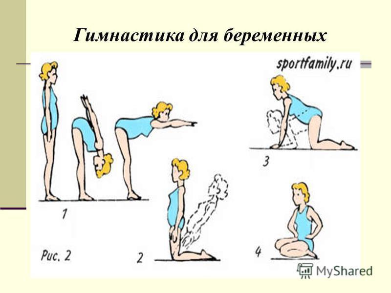 Зарядка. Гимнастика для беременных