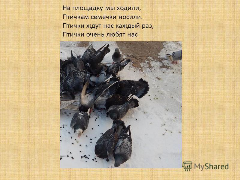 На площадку мы ходили, Птичкам семечки носили. Птички ждут нас каждый раз, Птички очень любят нас