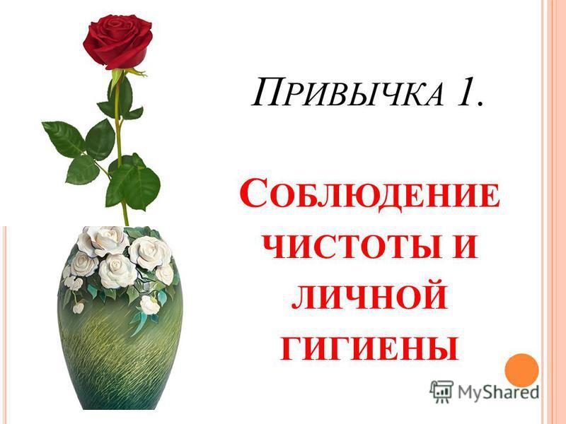 П РИВЫЧКА 1. С ОБЛЮДЕНИЕ ЧИСТОТЫ И ЛИЧНОЙ ГИГИЕНЫ