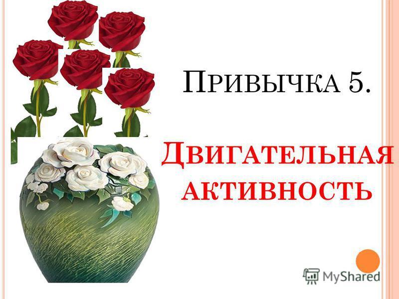 П РИВЫЧКА 5. Д ВИГАТЕЛЬНАЯ АКТИВНОСТЬ