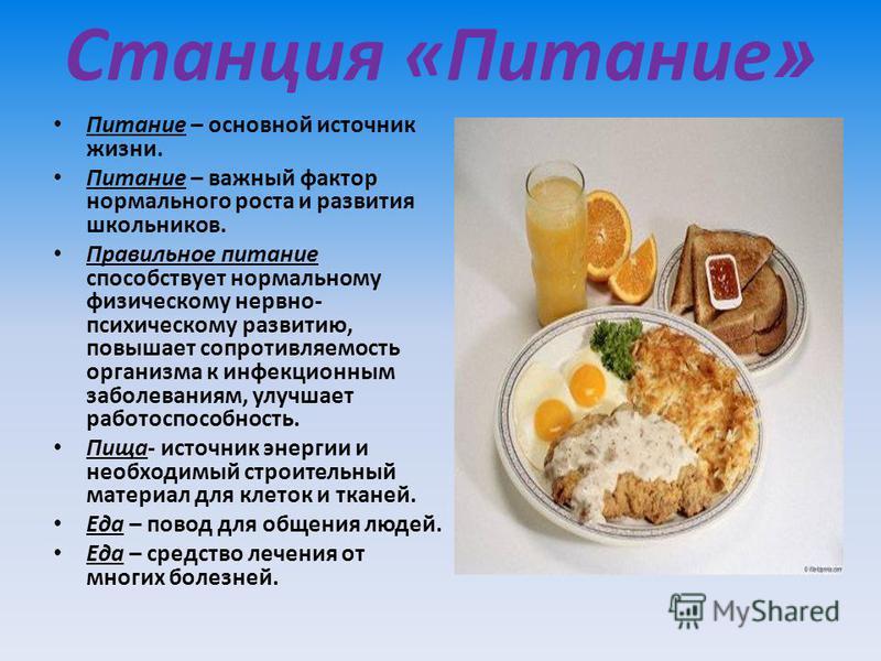 Станция «Питание » Питание – основной источник жизни. Питание – важный фактор нормального роста и развития школьников. Правильное питание способствует нормальному физическому нервно- психическому развитию, повышает сопротивляемость организма к инфекц