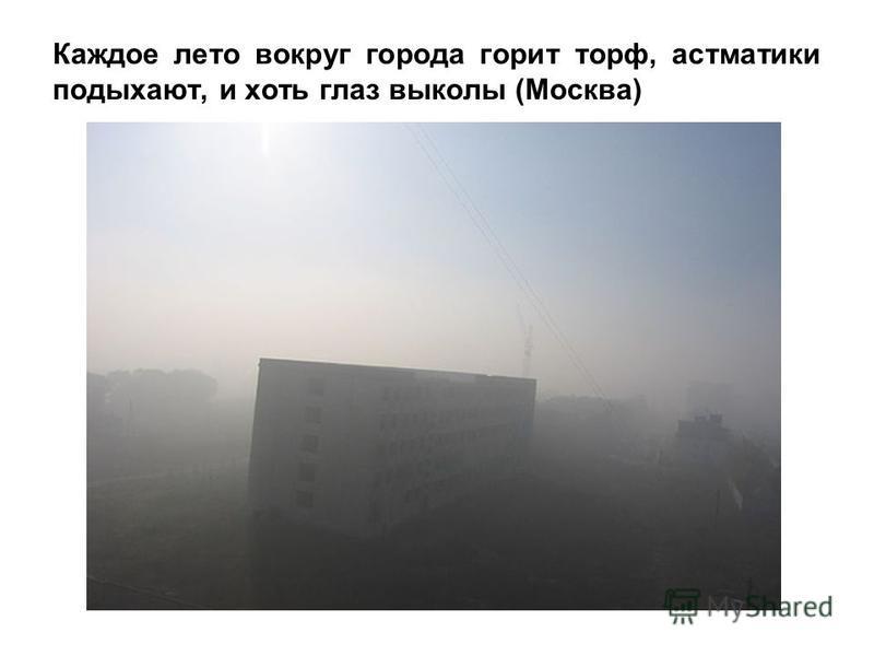 Каждое лето вокруг города горит торф, астматики подыхают, и хоть глаз выколы (Москва)