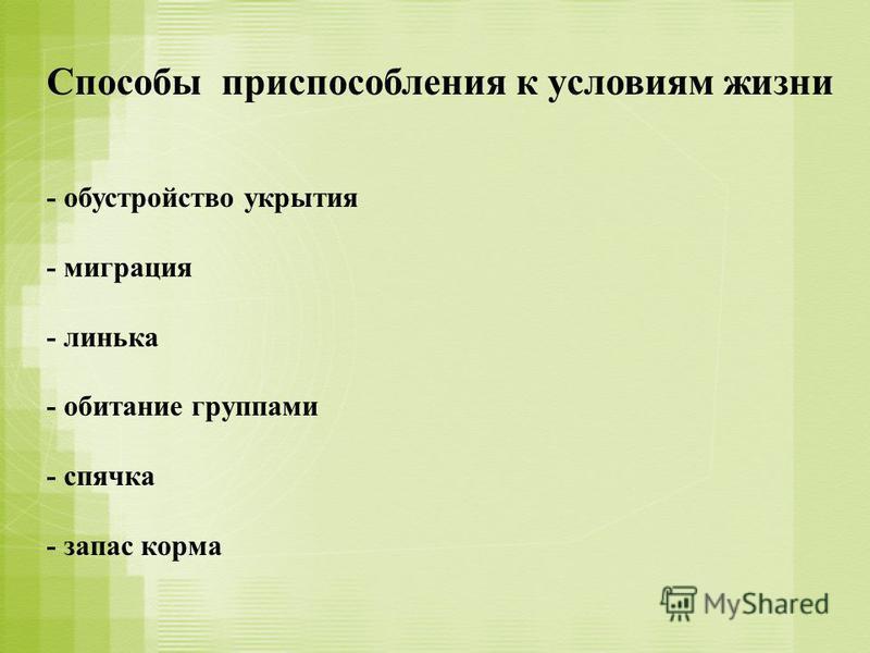 Способы приспособления к условиям жизни - обустройство укрытия - миграция - линька - обитание группами - спячка - запас корма