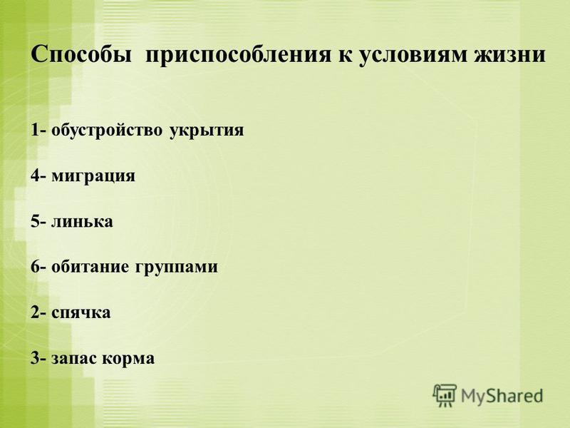 Способы приспособления к условиям жизни 1- обустройство укрытия 4- миграция 5- линька 6- обитание группами 2- спячка 3- запас корма