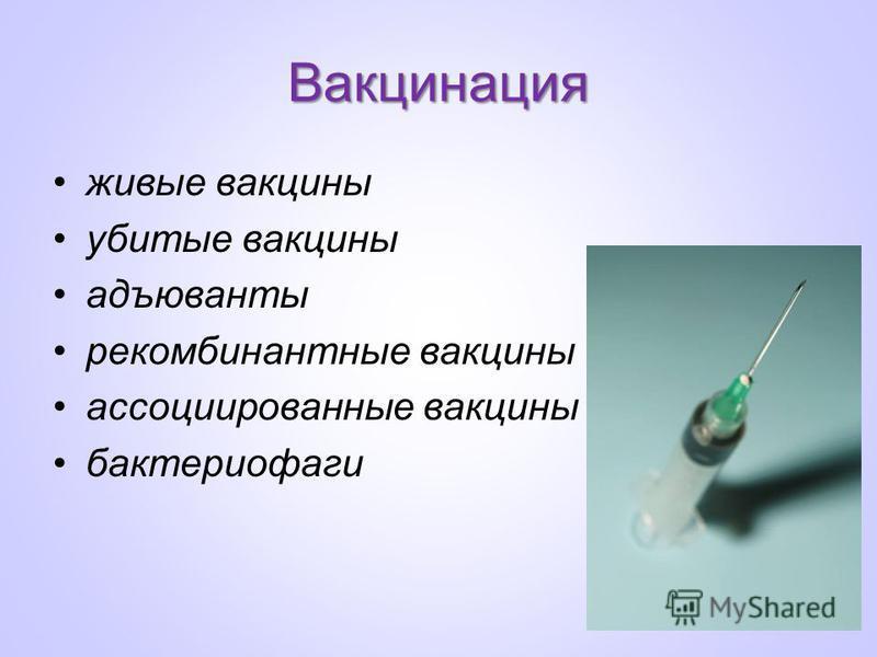 Вакцинация живые вакцины убитые вакцины адъюванты рекомбинантные вакцины ассоциированные вакцины бактериофаги