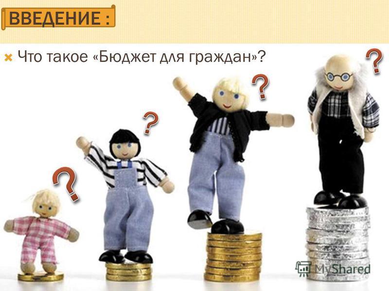 ВВЕДЕНИЕ : Что такое «Бюджет для граждан»?