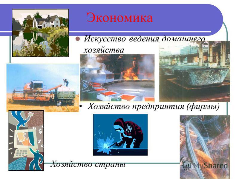 Экономика Искусство ведения домашнего хозяйства Хозяйство предприятия (фирмы) Хозяйство страны