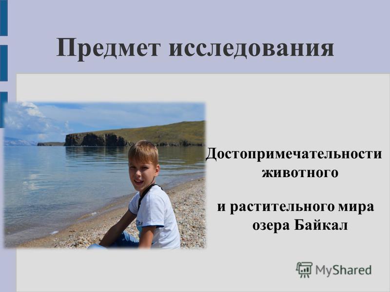 Предмет исследования Достопримечательности животного и растительного мира озера Байкал