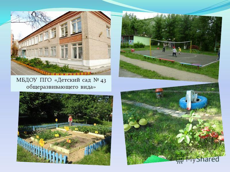 МБДОУ ПГО «Детский сад 43 общеразвивающего вида»
