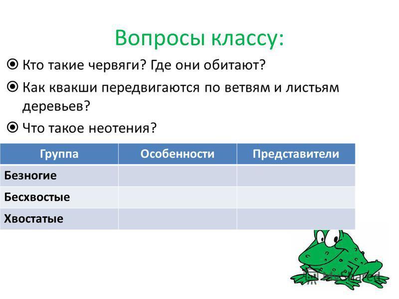 Вопросы классу: Кто такие червяги? Где они обитают? Как квакши передвигаются по ветвям и листьям деревьев? Что такое неотения? Группа ОсобенностиПредставители Безногие Бесхвостые Хвостатые