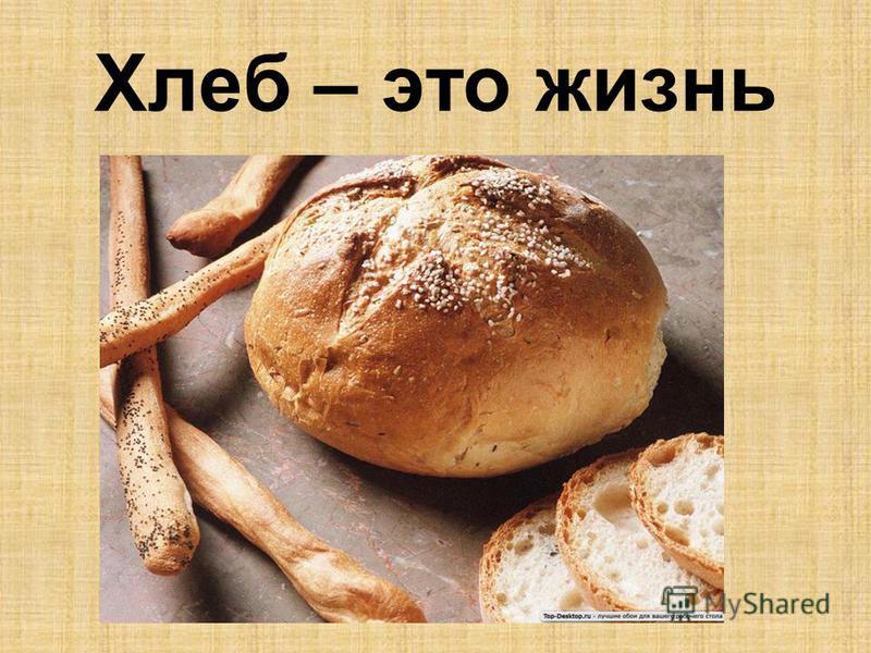 Хлеб – это жизнь