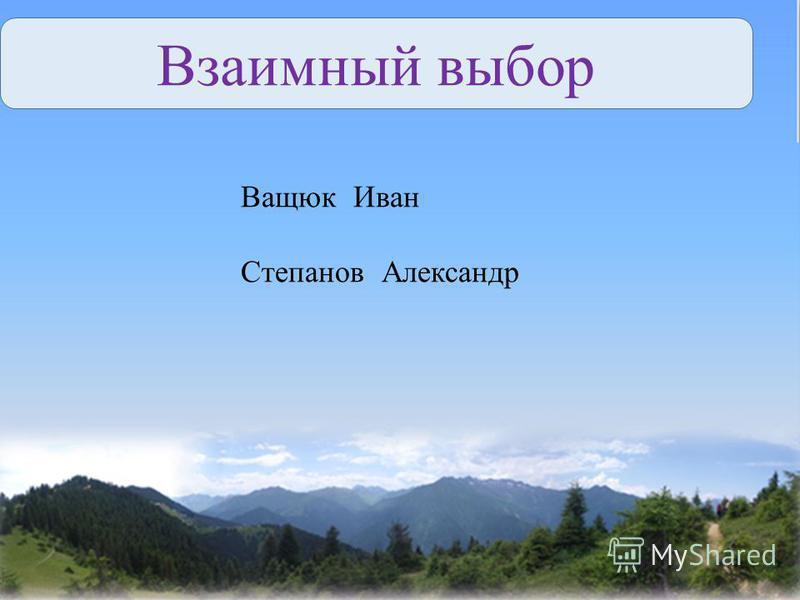 Взаимный выбор Ващюк Иван Степанов Александр