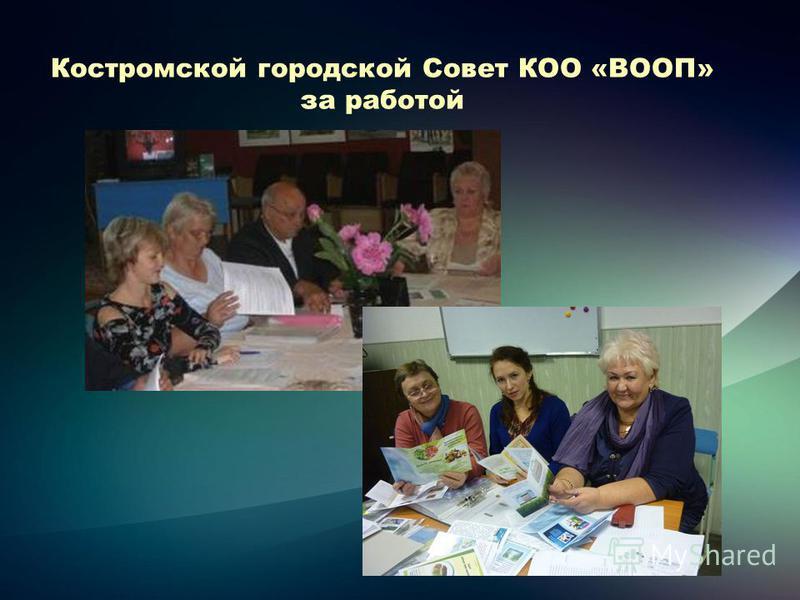 Костромской городской Совет КОО «ВООП» за работой