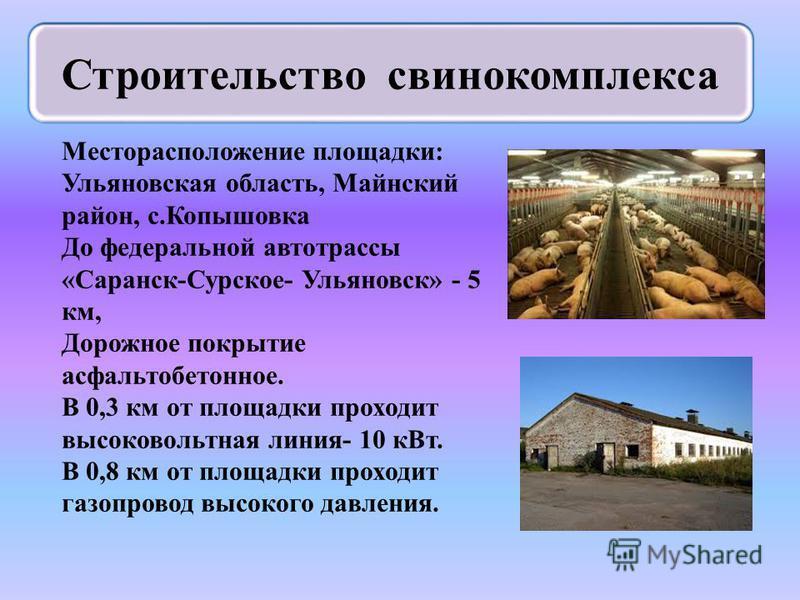 Месторасположение площадки: Ульяновская область, Майнский район, с.Копышовка До федеральной автотрассы «Саранск-Сурское- Ульяновск» - 5 км, Дорожное покрытие асфальтобетонное. В 0,3 км от площадки проходит высоковольтная линия- 10 к Вт. В 0,8 км от п