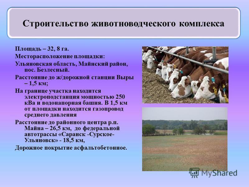 Площадь – 32, 8 га. Месторасположение площадки: Ульяновская область, Майнский район, пос. Безлесный. Расстояние до ж/дорожной станции Выры – 1,5 км; На границе участка находится электроподстанция мощностью 250 к Ва и водонапорная башня. В 1,5 км от п