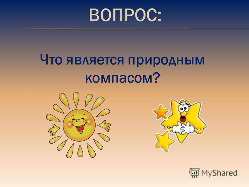 ВОПРОС: Что является природным компасом?