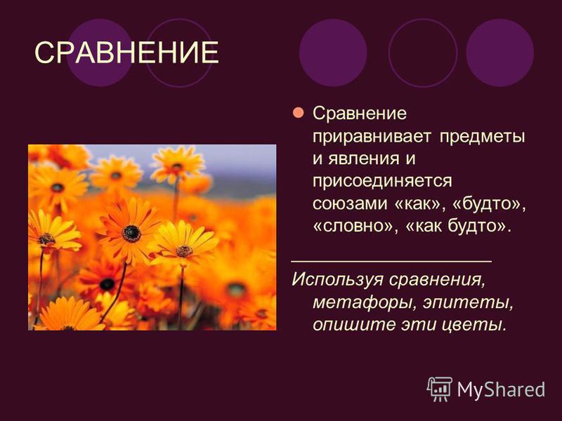 СРАВНЕНИЕ Сравнение приравнивает предметы и явления и присоединяется союзами «как», «будто», «словно», «как будто». ___________________ Используя сравнения, метафоры, эпитеты, опишите эти цветы.