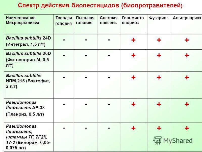 Спектр действия биопестицидов (биопротравителей ) Наименование Микроорганизма Твердая головня Пыльная головня Снежная плесень Гельминто псориаз Фузариоз Альтернаркоз Bacillus subtillis 24D (Интеграл, 1,5 л/т) --- +++ Bacillus subtillis 26D (Фитоспори