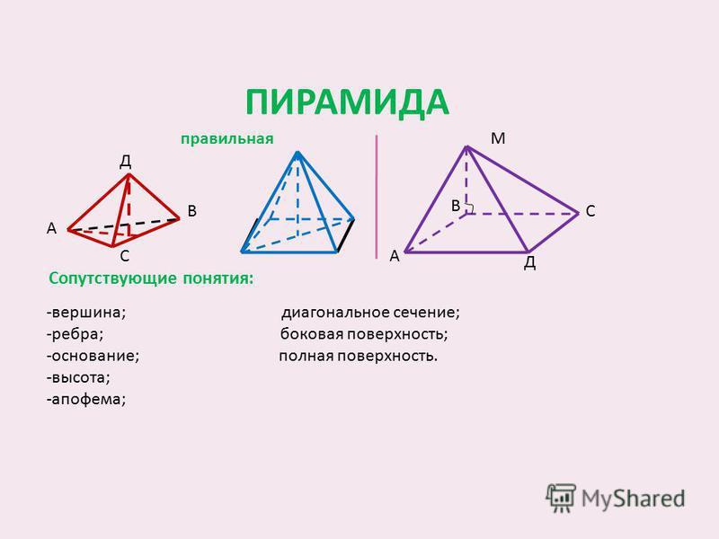 ПИРАМИДА Сопутствующие понятия: правильная -вершина; диагональное сечение; -ребра; боковая поверхность; -основание; полная поверхность. -высота; -апофема; М С Д А В Д А В С